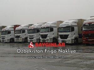 Özbekistan Frigo Nakliye
